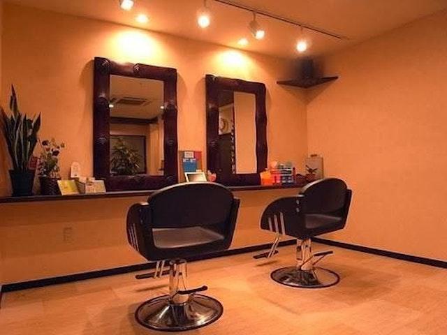 Vol-Vox hair lab