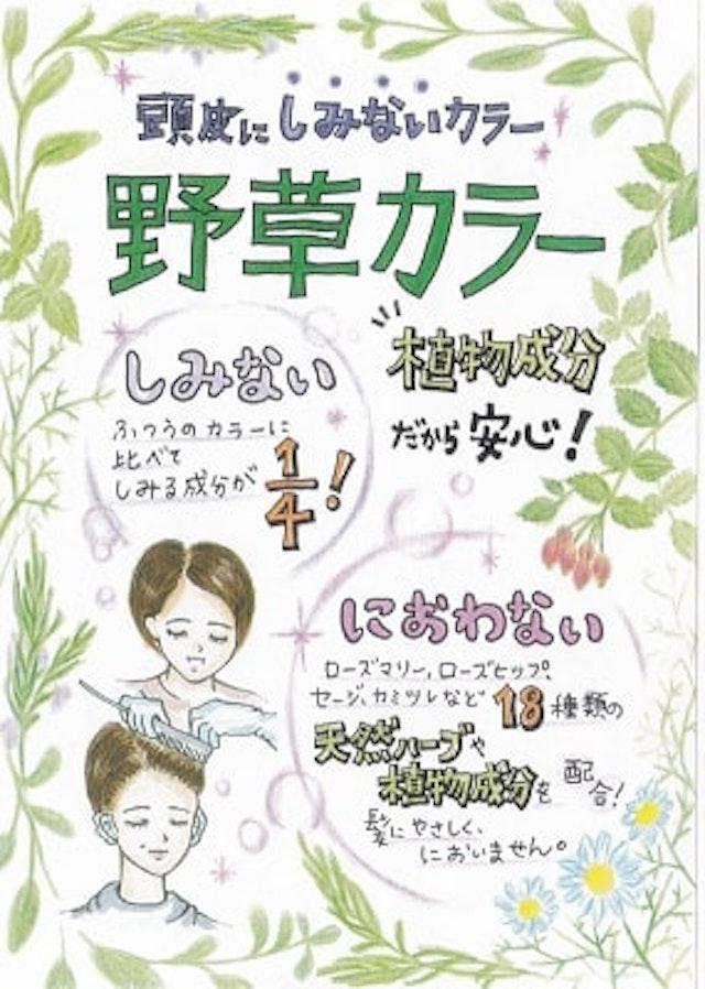ヘナ・野草カラー(シャンプー・ブロー別)